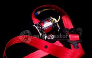 Red Seat Belt Strap